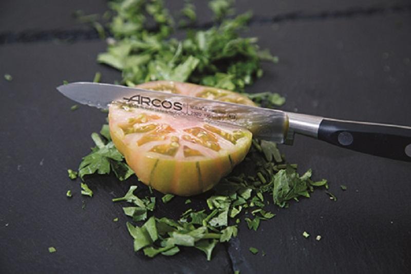 Ножи серии Riviera ARCOS