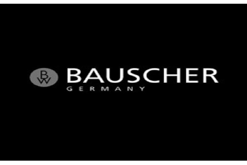Фарфор Bauscher Германия
